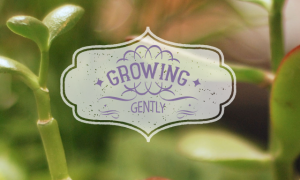Growing Gently